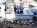 Caribsea fri all fish_resize