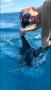 Jen Sullivan Sea Horse Sailfish Release best low res