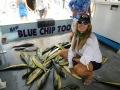 Blue-Chips-Mahi-_resize