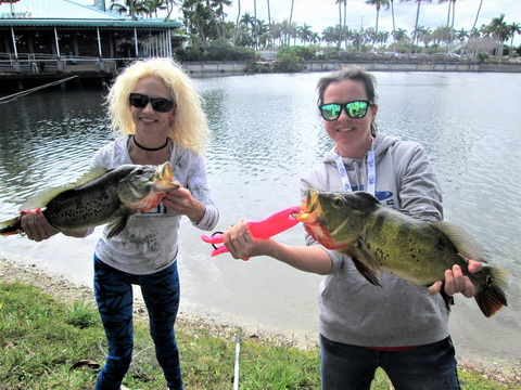 Jennifer Chandler Naples Meghan Brunelli Palmetto FL peacock bass_resize