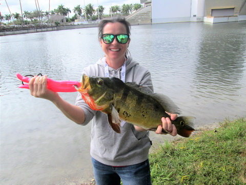 Meghan Brunelli Palmetto FL Peacock Bass_resize