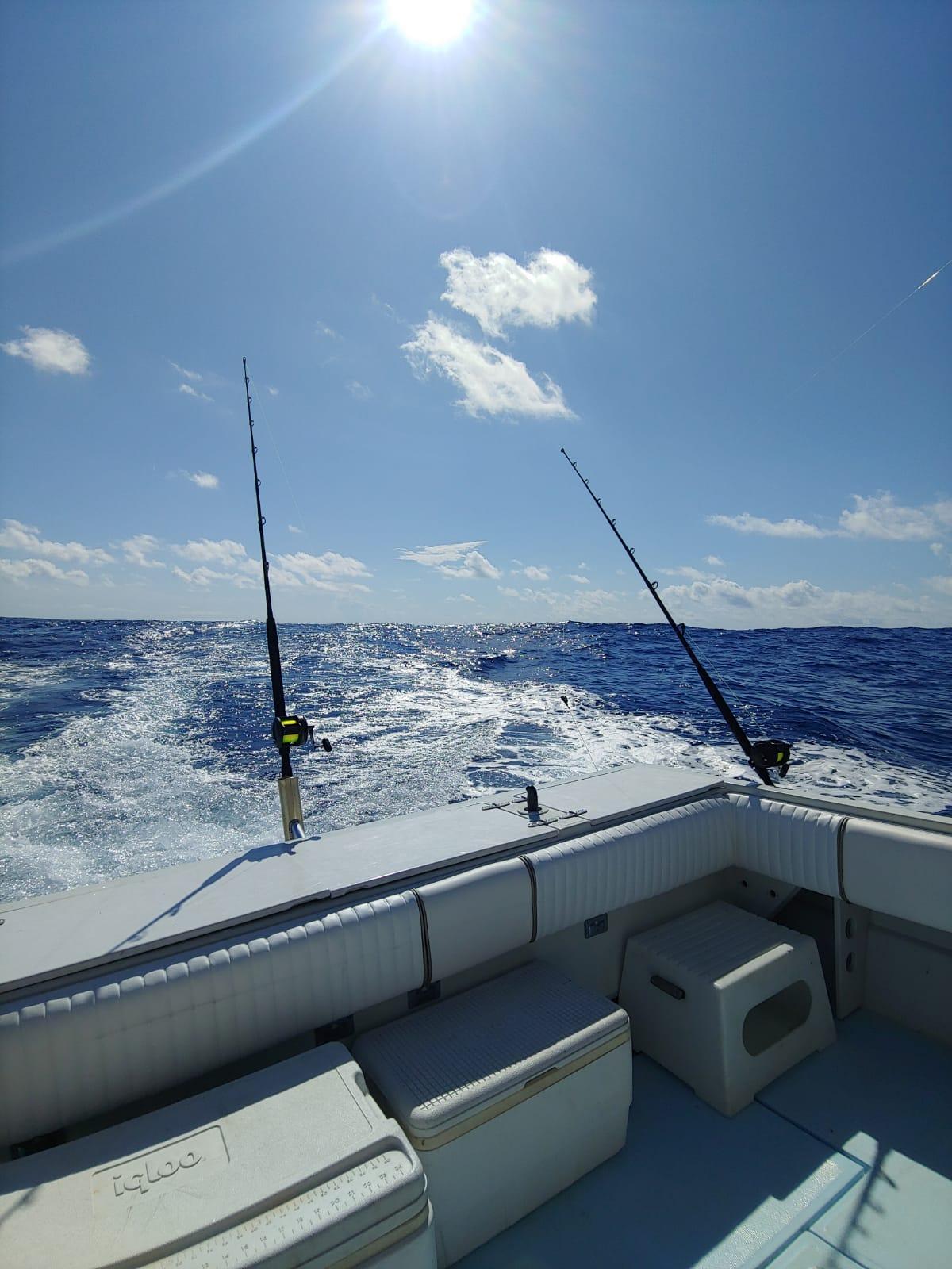 Fishing-blue-ocean