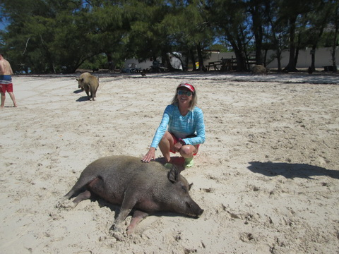pigs-9_resize