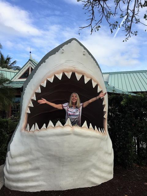 BB-shark-Bass-Pro-Shops-Dania-Beach_resize