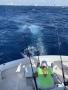 Big-Game-Renee-Kempf-reeling-with-ocean-background_resize