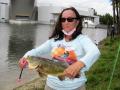 Eileen-Schneider-peacock-bass_resize